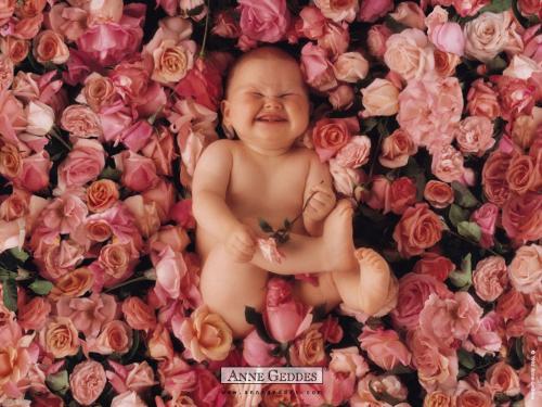 Ребенок в цветке