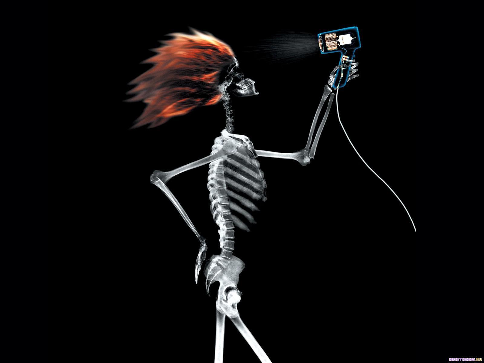 Прикольные фото скелетов 5